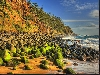 Beautiful Norfolk Island pines line the cliffs