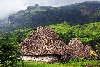 Navala Village is one of the must-see places in Fiji