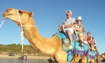 Embark on a camel ride of Cable Beach