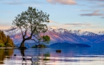 Explore the picturesque Lake Wanaka