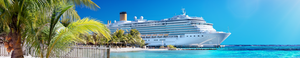 Cruise Travel Plans